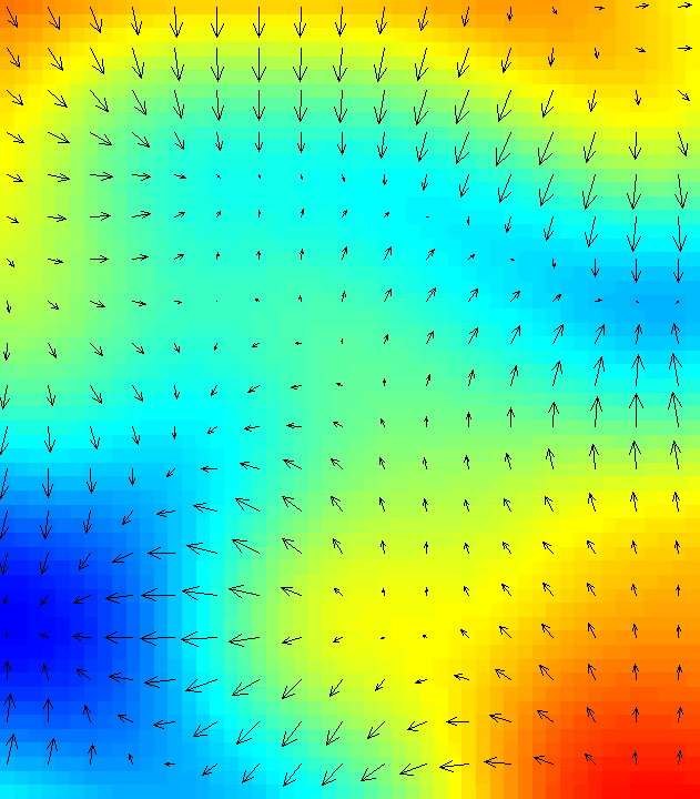 D rast arrow magnitude