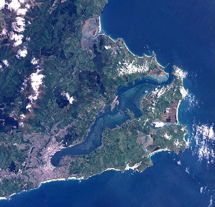 Dunedin landsat aggr97presv