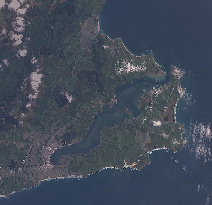 Dunedin landsat original